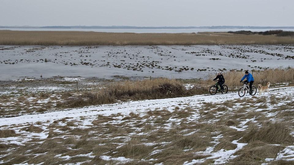 Staten har planer om at opføre en ny ø i Flade Sø i Thy, der skal hjælpe med at fjerne 79 ton kvælstof. Scanpix/Henning Bagger