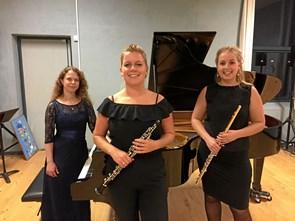 Tvillinger giver koncert i Hobro