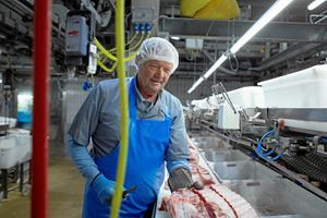 71-årige Søren er slagteriarbejder på akkord: - Livet som pensionist blev sgu for kedeligt