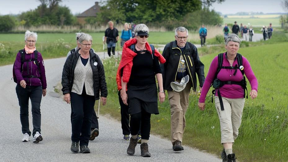 Pilgrimsvandring lørdag