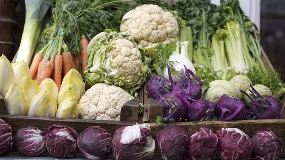 - Det sundeste er at spise en varieret kost og moderate mængder, selv om det kan lyde meget banalt, siger professor i kostforskning. Foto: Colourbox