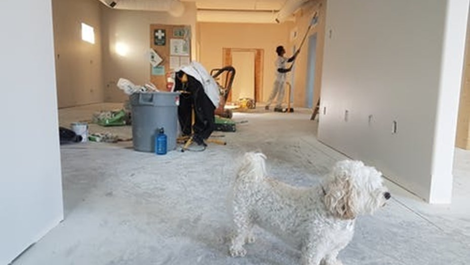 Trænger dit hus til en stor renovering? Få gode råd her