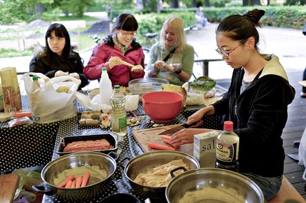 Asian Culture Festival er efterhånden veletableret i Aalborg. Tidligere har den været holdt i blandt andet Karolinelund, i år finder du den på Toldbod Plads. Arkivfoto: Claus Søndberg