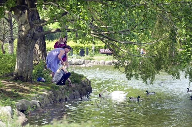 Ny fredning sikrer Aalborgs åndehuller: To parker omfattet - flere på vej