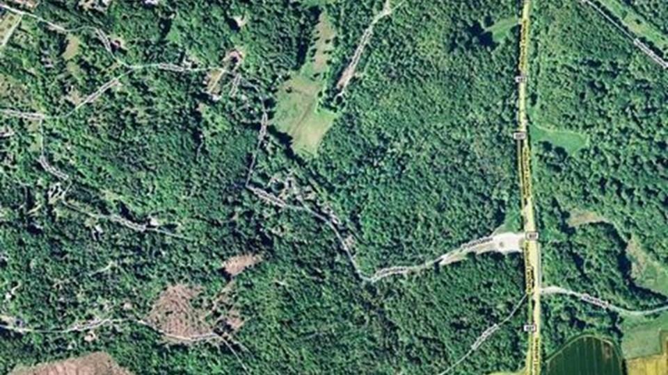 Narkofundet blev gjort i et hus her i skovområdet i Lundby Krat.