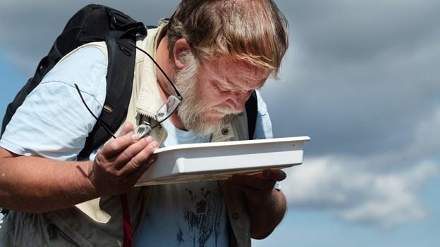 Konen forsvandt - nu  leder Lars efter insekter