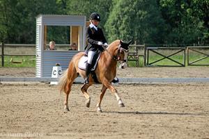 DM-stævne for ponydressur i Frederikshavn