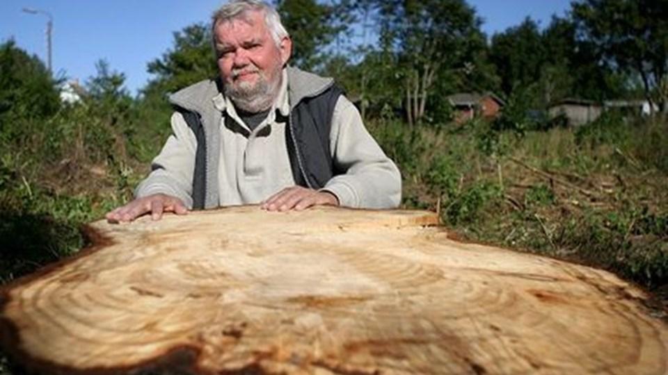 John Kristiansen mener, at Aalborg Lufthavn ødelægger naturområdet og fælder træer, som er helt friske. Lufthavnens driftschef slår derimod fast, at oprydningen primært skyldes målet om at være bedre til at bekæmpe bjørneklo. foto: thomas Vinther