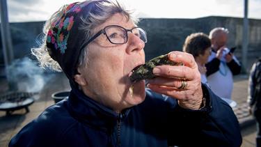 I Løgstør står folk på venteliste for at dyrke egne muslinger: - Vi gør noget godt for både naturen og vores maver
