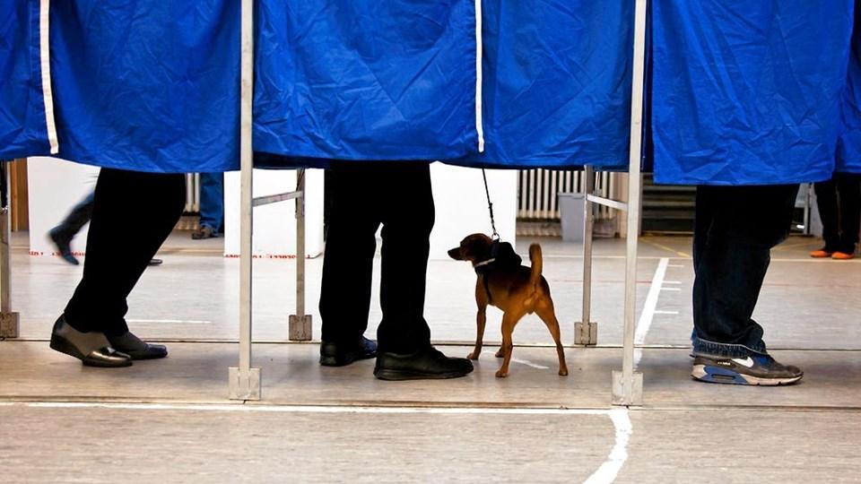 Det er ikke Arne Schmidt og hans trosfæller, der står i stemmeboksene. Arne ønsker ikke at blive fotograferet. Arkivfoto: Mads Hansen