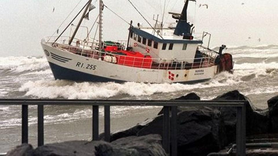 2007 bliver hårdt for de danske fiskere, men på sigt kan økonomien blive meget bedre - for meget færre. Foto: Scanpix