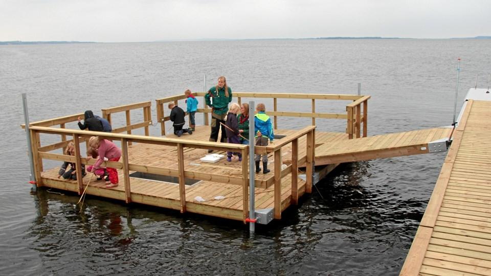 Det er en platform som denne ved Skive, der er planer om at indkøbe til Krik Vig. Platformen her er fremstillet af NBC Marine og kan adskilles i tre dele med henblik på flytning. Privatfoto