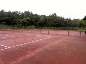 Årsmøde i tennisafdeling