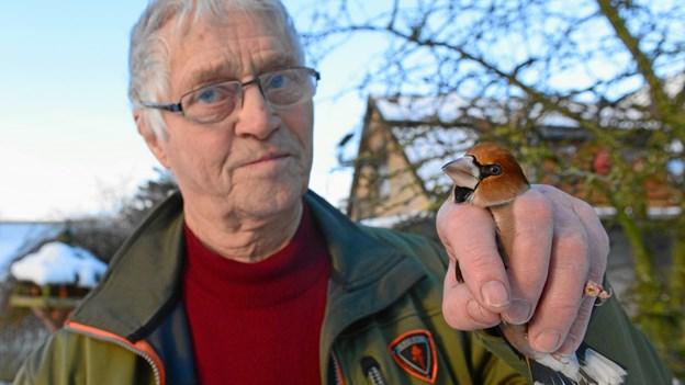William fra Pandrup har 60 års jubilæum: Har sat ringe på 164.000 fugle