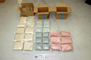 70-årig sigtet for indsmugling af over 13 kilo narko