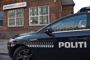 Politi ransagede HA-rockerborg