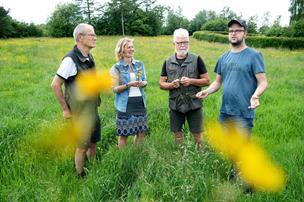 Beboere på Stentoften slipper blomsterne fri: Nu skal kællingetand og tjærenellike have plads midt i byen