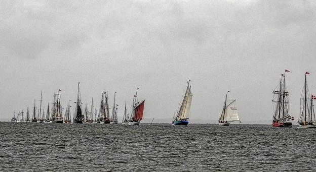 De mange træskibe på vej til startstedet ved lysbøjen. Foto: Mogens Lynge