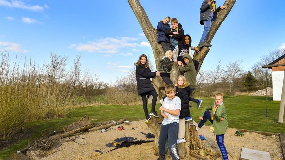 Nogle af eleverne fra 4.b på Ferslev Skole. Foto: Jesper Thomasen