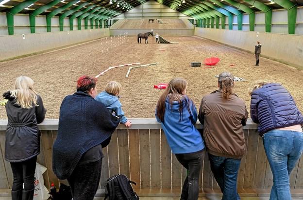 I den store hal viser Heidi Holm, hvordan en hest trænes til at færdes i forskellige miljøer. Foto: Niels Helver