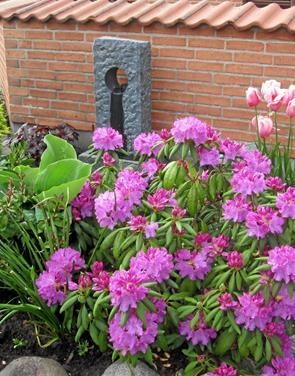 Besøgte åbne haver i Saltum