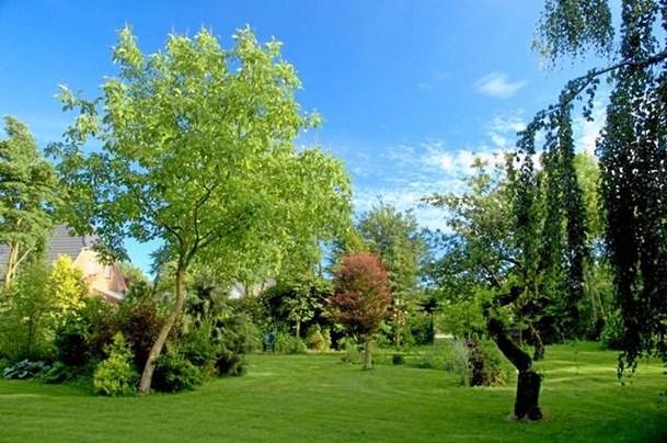 Møde i Sindal for havefolk: Nye sjældne træer og buske