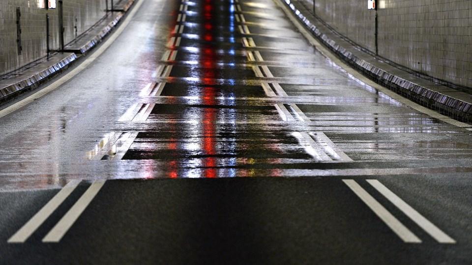 Rådyr tog vejen gennem Limfjordstunnelen. Arkivfoto: Claus Søndberg