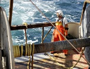 Trawlfiskere klemt i nye regler: 17 meter gør en forskel