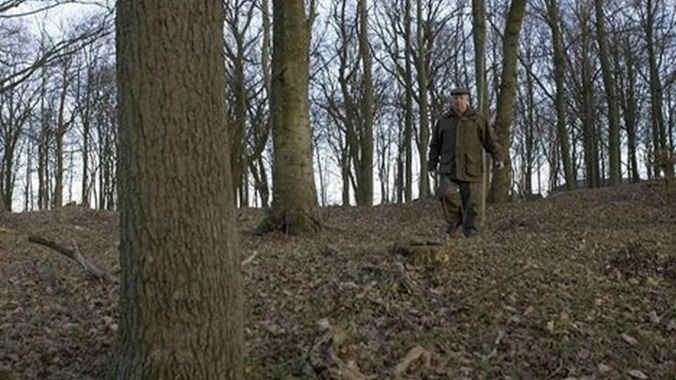 Mange har i gennem årene spurgt mig, om der var mulighed for at deres aske kunne blive begravet i min skov, og det er på den måde idéen oprindelig opstod, fortæller Julius Arenfeldt. foto: carl th. poulsen