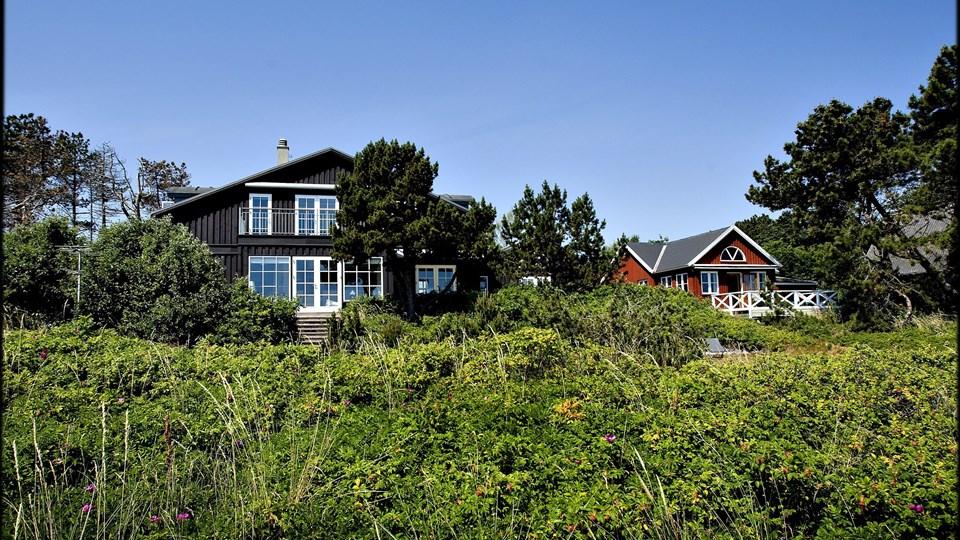 Turister lejer flere feriehuse ved de danske kyster Foto: Scanpix/Bax Lindhardt