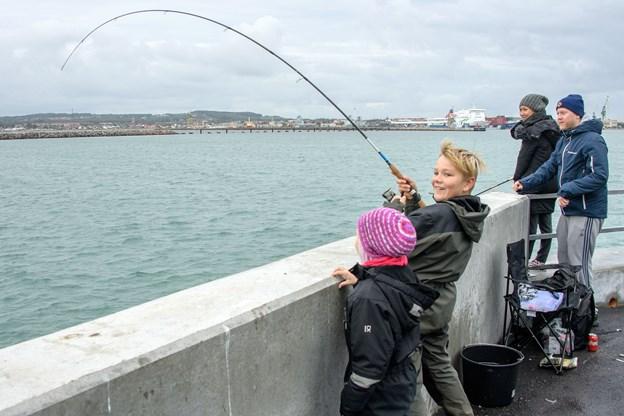 Lystfiskerne har længe savnet fiskeriet fra nordmolen - lørdag fik de chancen - og mange benyttede sig af det.