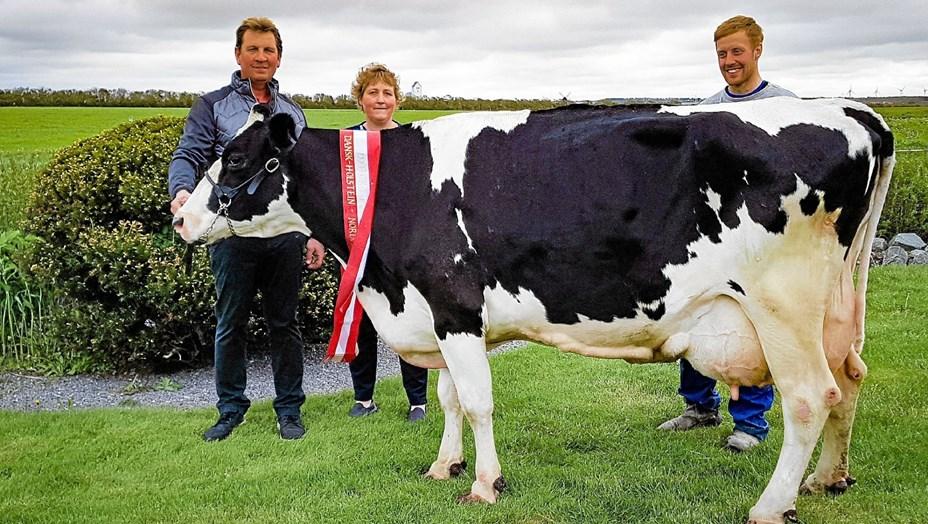 Ko rundede de 100.000 kg mælk