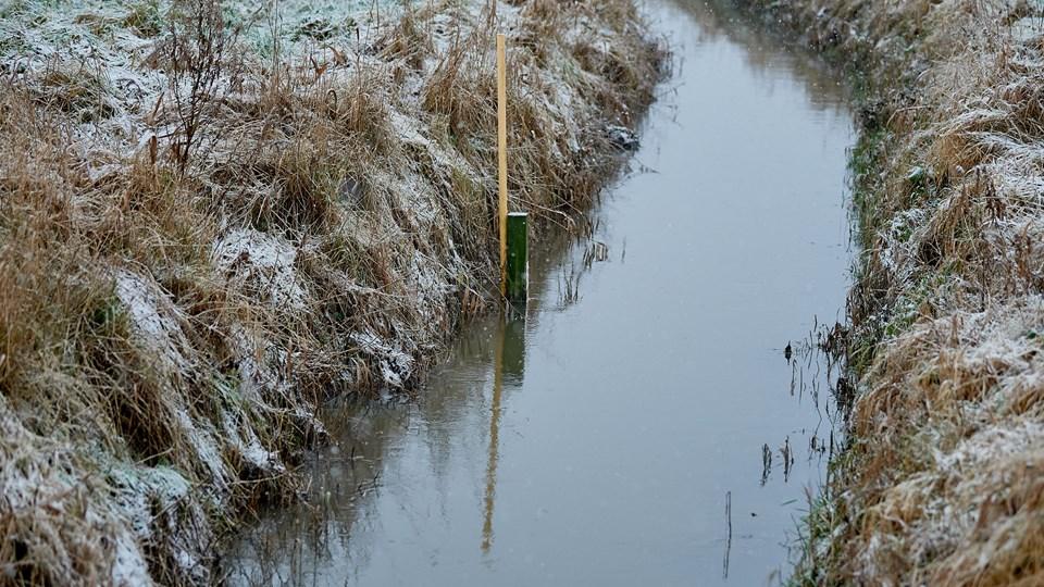 Klimaforandringerne øger ved Limfjorden risikoen for oversvømmelser. Her vil en natur- og klimafond kunne hjælpe. Foto: Henrik Bo
