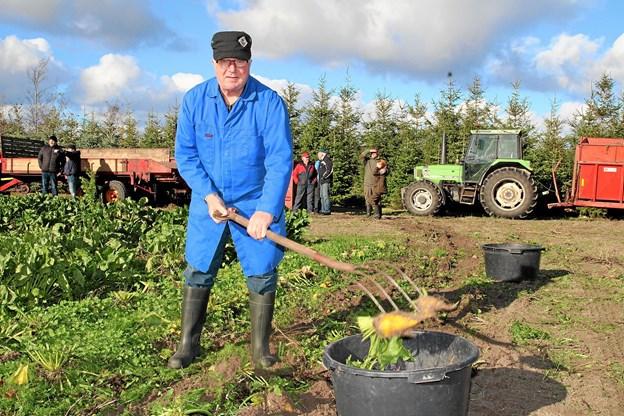 Den 83-årige landmand Martin Lynge fra Skræm kom forbi for at hente nogle sukkerroer til sine høns. Foto: Flemming Dahl Jensen