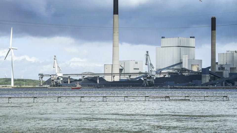 På papiret skal Aalborg Kommune ud at investere milliardbeløb i biomassefyret værk, når Nordjyllandsværket er udtjent, men rådmand er sikker på, at Aalborg får en dispensation. Arkivfoto: Michael Koch