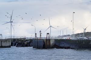 Forår på vej: Bygger havn i granit og beton
