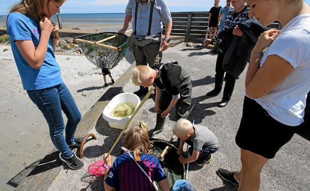 Store fiskedag i Asaa