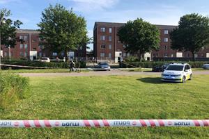 Svensker anholdt for indblanding i dobbeltdrab i Danmark