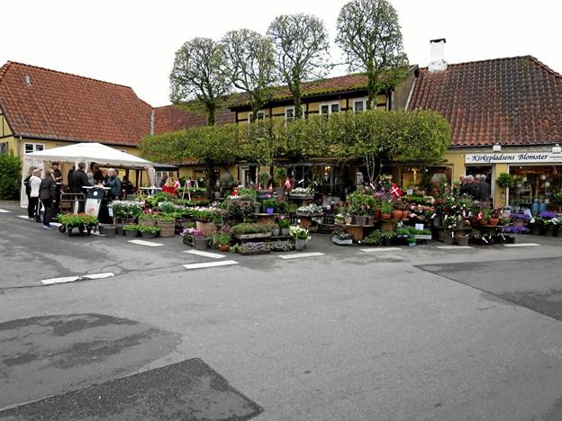 Kirkepladsens Blomster fejrede samme dag sit 100 års jubilæum med underholdning, øl og vinsmagning, grillpølser og kage. Hele butikken og pladsen udenfor var fyldt med gode tilbud og rigtig mange kunder kiggede forbi. Foto/tekst: hhr-freelance.dk