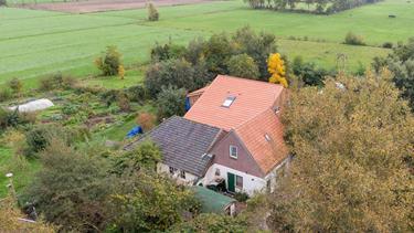 Medier: Hollandsk familie levede skjult i kælder i årevis