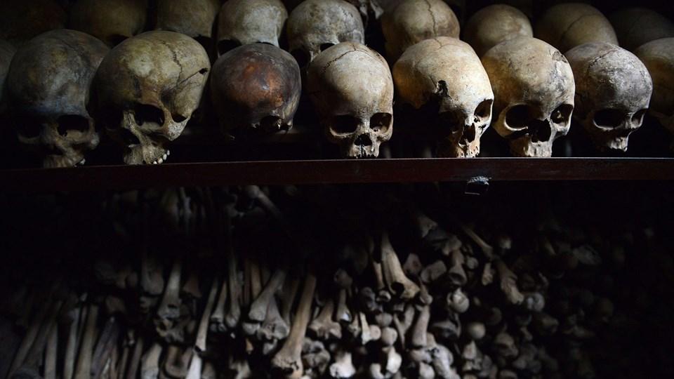 Retten i Hillerød skal bruge cirka 10 retsmøder på at afgøre, om 50-årig dansk-rwander kan udleveres i en sag om deltagelse i folkedrabet i 1994. Foto: Scanpix/Simon Maina/arkiv
