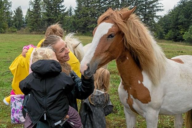 Undervejs kom deltagerne i kontakt med heste af racen Islændere og Fjordheste, der afgræsser området som naturpleje.
