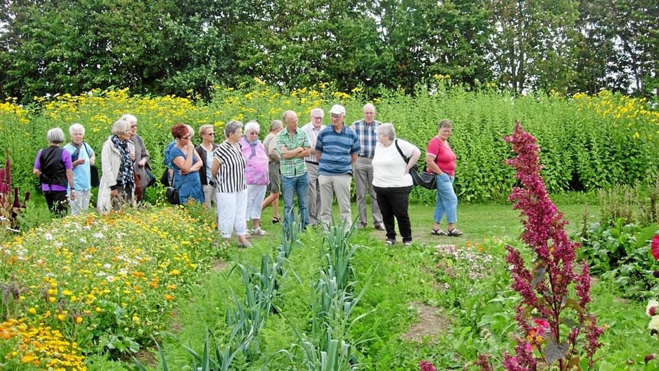 Deltagerne besøgte bl.a. Den Økologiske have i Odder. Privatfoto