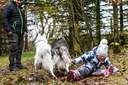 Galleri fra en stor dag: 20 hunde mødte frem til indvielse af ny hundeskov