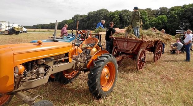 I marken arbejder folkene med gamle veterantraktorer på at få høsten i hus.Privatfoto