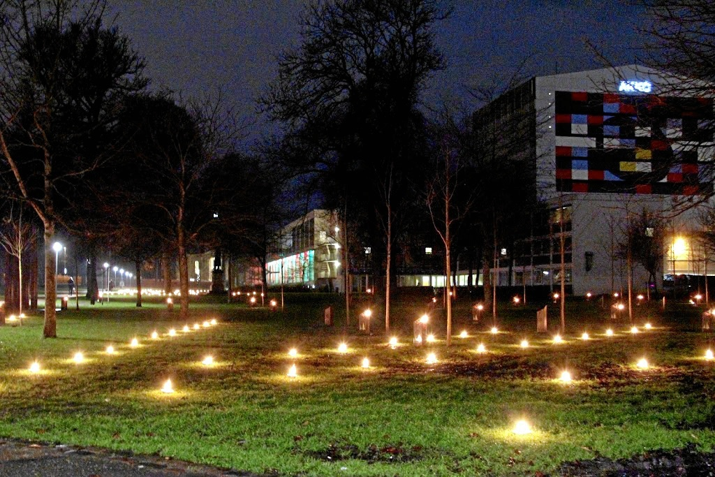 Julestemningen indfinder sig snart i Kildeparken med levende lys og syngende træer. Arkivfoto
