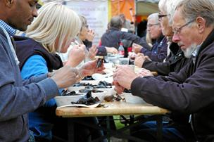De fester med skaldyr: Fire dage i muslingens tegn i Løgstør