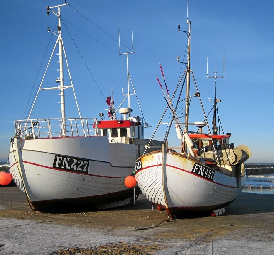 Turisme, fiskeri eller begge dele?