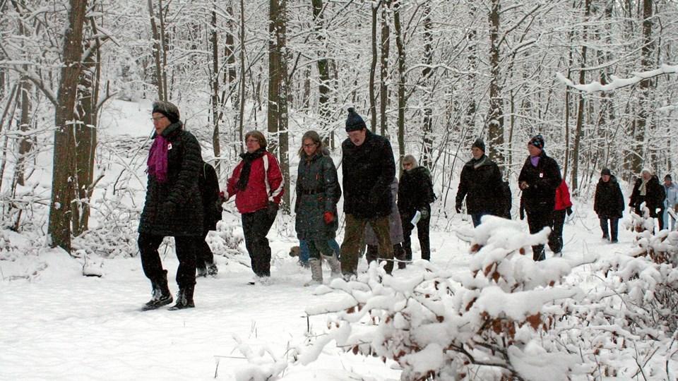 Første søndag i december vælger tusindvis af danskere hvert år at gå en rask tur for at støtte en god sag. pr-foto