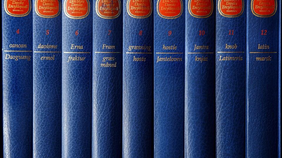 Lex.dk tager blandt andet udgangspunkt i Den store danske encyklopædis digitale version Den Store Danske. (Arkivfoto)